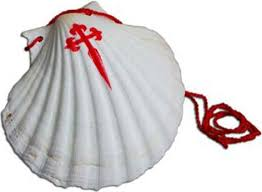 Image result for shell of st james